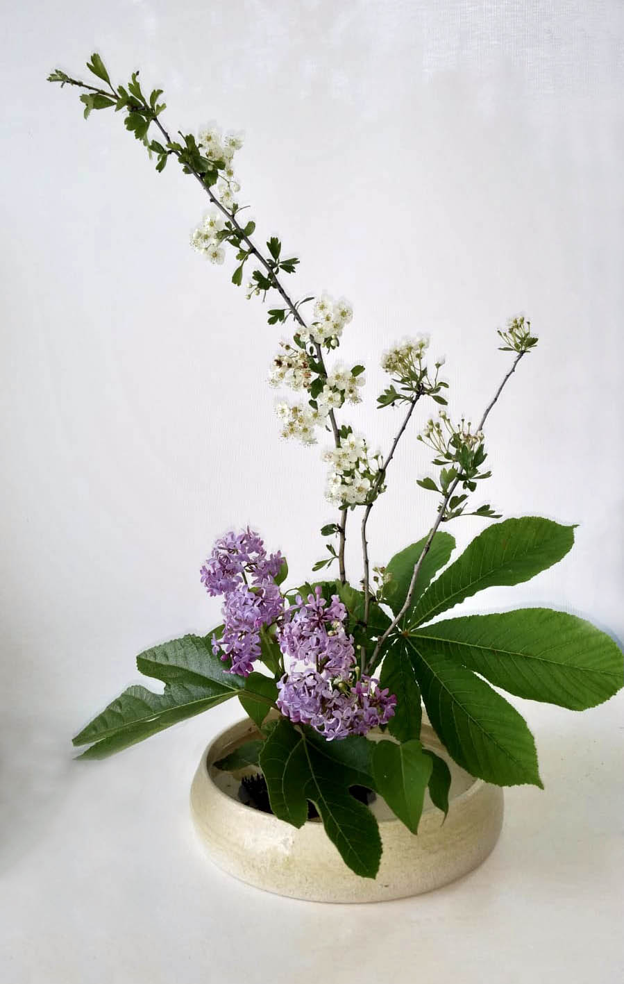Ikebana por Feng